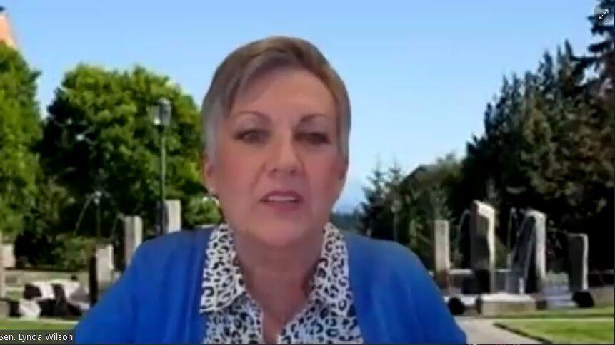 Lawmakers talk capital gains tax in town hall | News